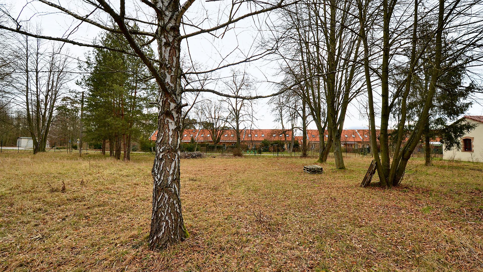 Stavební parcela u lesa